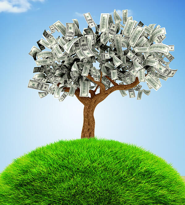 3D Money growing on a tree - financial concepts
